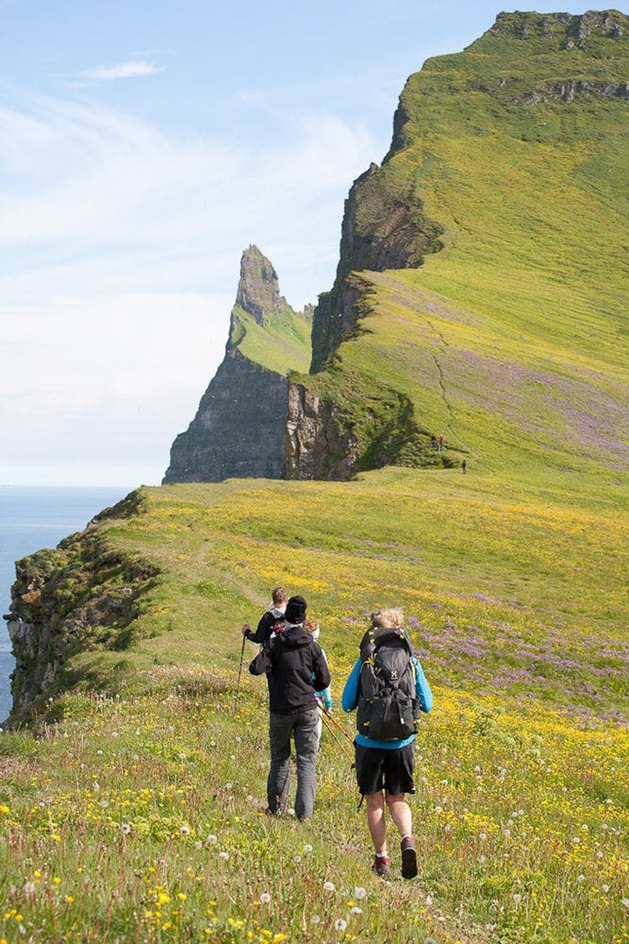 Hiking in Iceland is authentic, cheap and full of adventure. Don't miss your chance to hike during your trip.