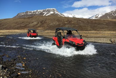 Full Day Buggy Adventure Tour from Reykjavik
