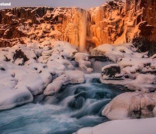 Paquete de invierno de 5 días en familia | Círculo Dorado, Costa Sur, Reikiavik y la Laguna Azul