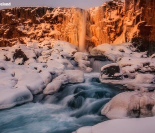 5-dages familievenlig vinterpakke | Den Gyldne Cirkel, sydkysten, Reykjavík og Den Blå Lagune