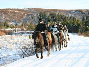 Viking Horseback Tour   Helgafell or Heidmork
