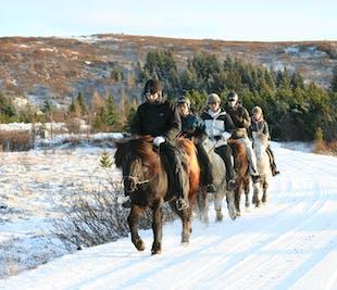 Viking Horseback Tour   Heidmork