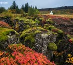 Þingvellir National Park clad in the scarlet colours of autumn.
