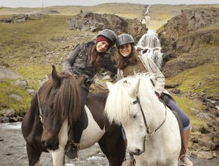 乗馬はアイスランドの人気のスポーツだ