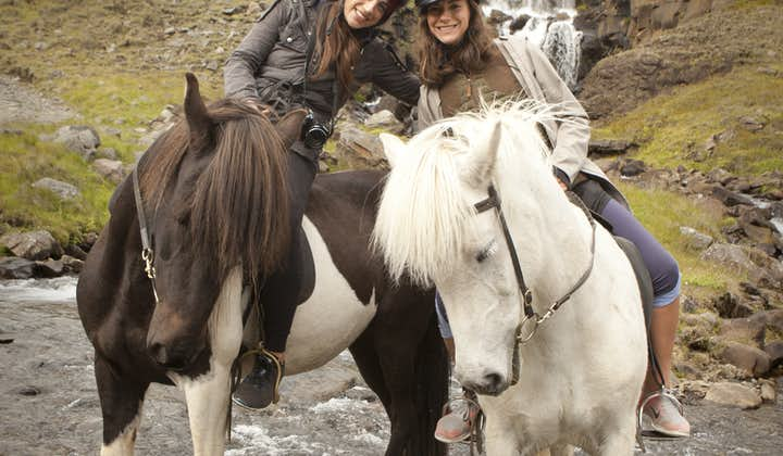 Horse riding is one of the most popular tour activities in Iceland.