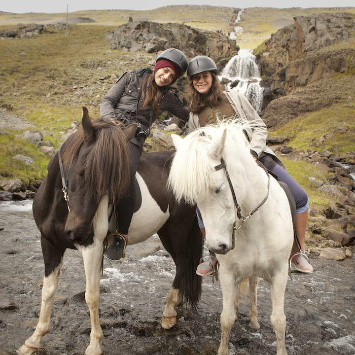Nelle terre selvagge!   Tour a cavallo nell'Islanda orientale