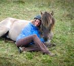 Le cheval islandais est reconnu pour sa fiabilité et sa gentillesse, capable d'endurer les hivers rudes.