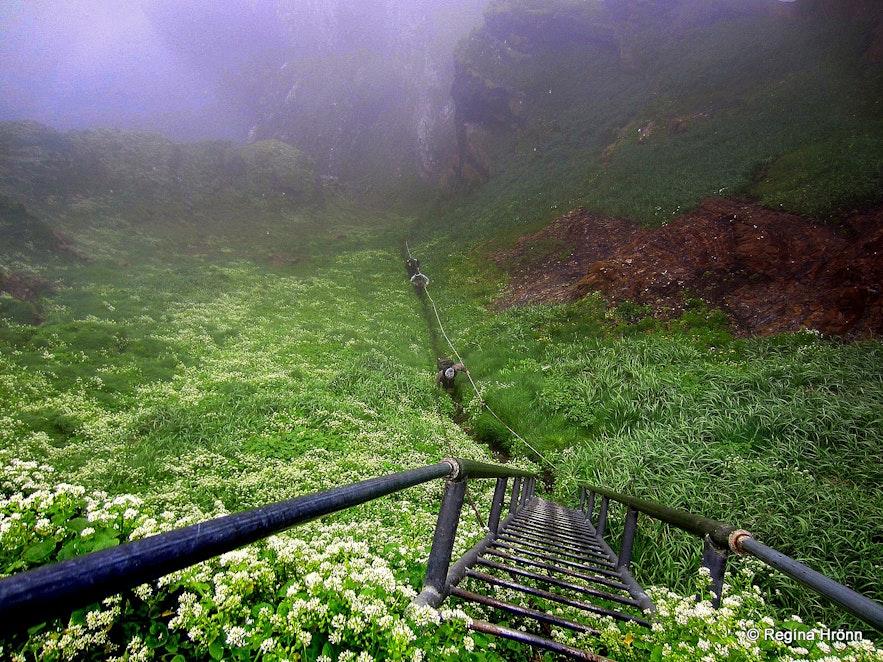 Drangey island ladder