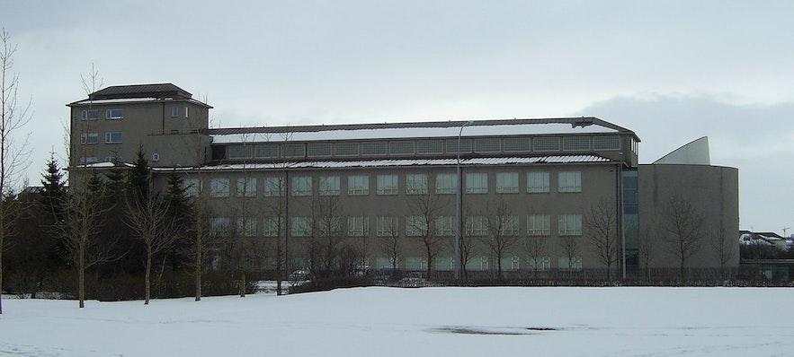 冰島國家博物館