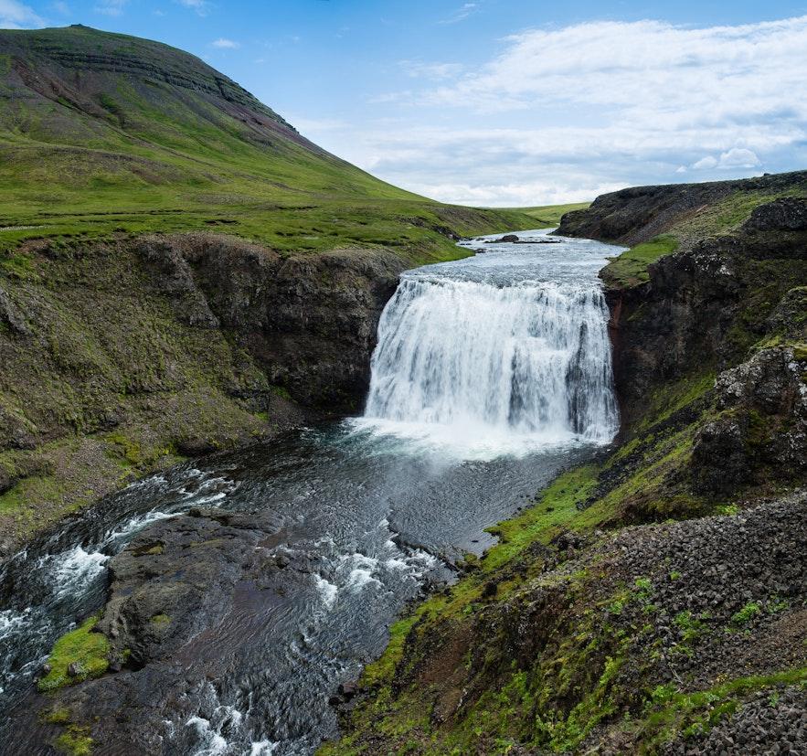 冰島purfoss