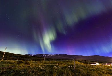 2-Day Tour to North Iceland   Horses, Turf Houses & Northern Lights
