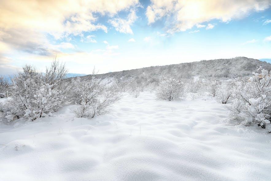 冰島隆冬二月