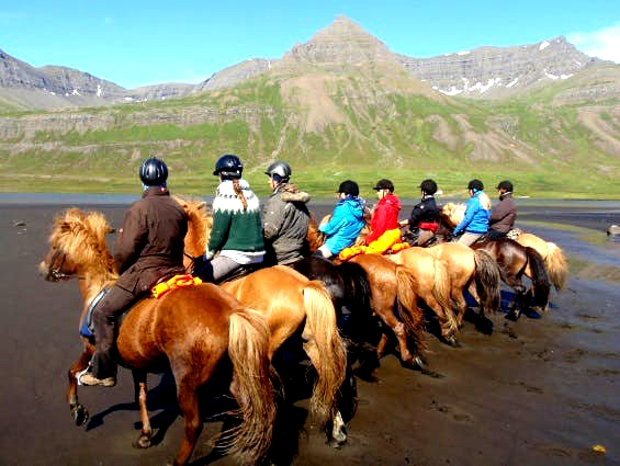 Going horseback riding in Iceland is one of the most essential local experiences travelers can have.