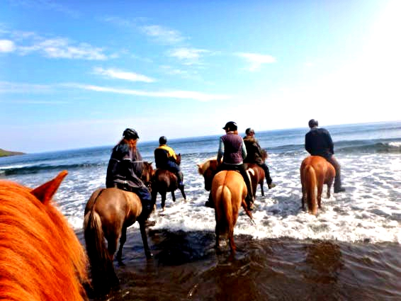 Ride in the tide of the Atlantic Ocean on a horse riding tour in the East Fjords of Iceland.