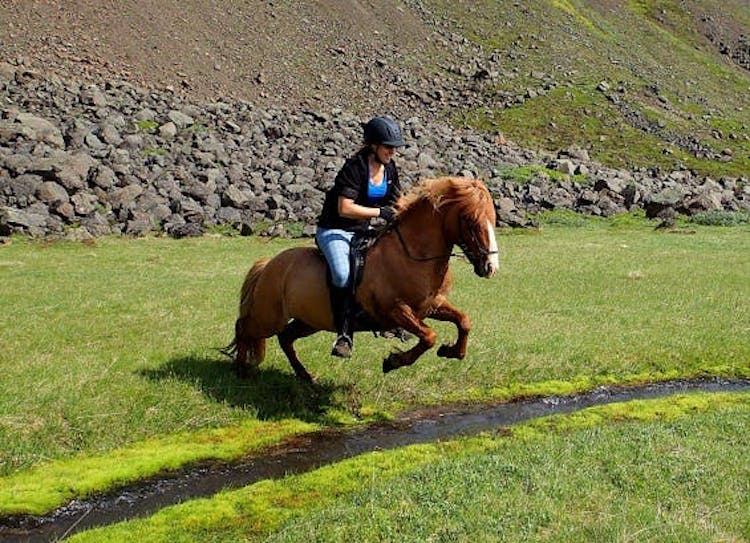 Riding an Icelandic horse through the pastures of the East Fjords is an unforgettable experience.