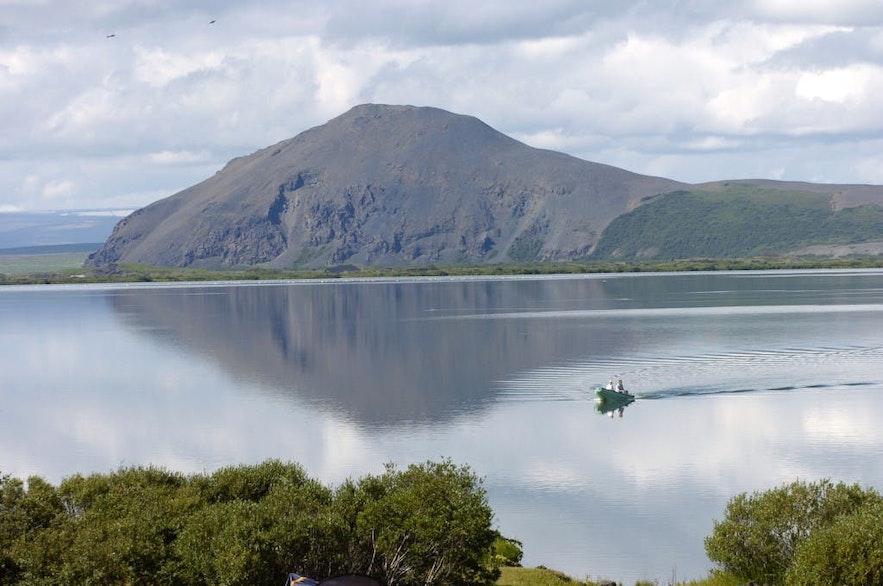 Le lac Mývatn dans le nord de l'Islande a une variété de poissons