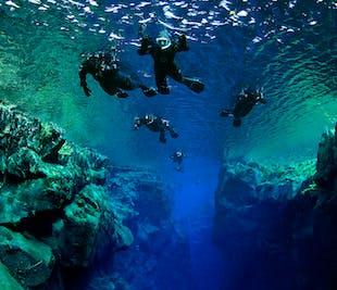 ทัวร์ดำน้ำตื้นที่ซิลฟรา | พบกันที่จุดดำน้ำ