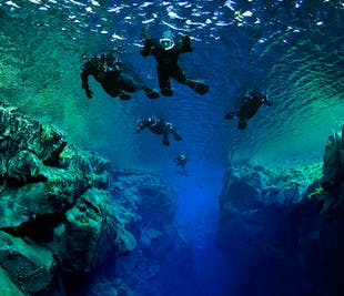 Top-Rated Snorkeling Silfra Tour | Meet on Location