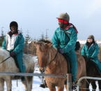 The Icelandic horse is perfect for beginners to horse riding, as they are not only friendly and well trained, but short in stature.