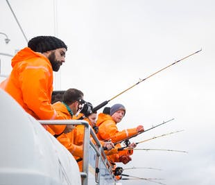 Pêche en mer depuis le port de Reykjavík