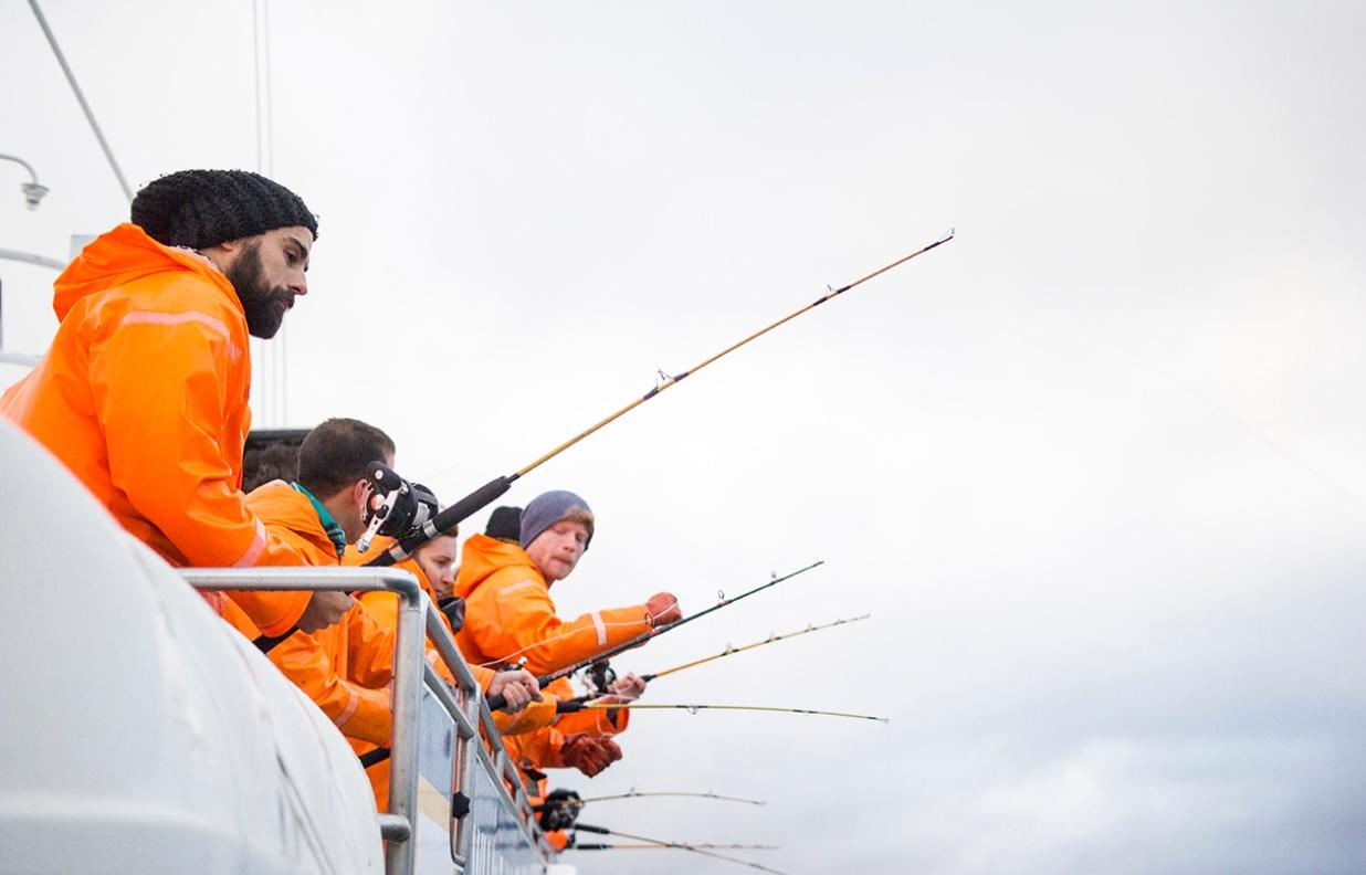 Wenn du in der Bucht von Faxaflói angeln willst, musst du vom alten Hafen im Zentrum von Reykjavík aus segeln.
