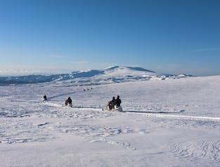 Découverte du sud de l'Islande et motoneige | Sortie en petit groupe