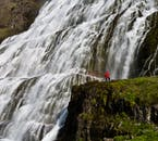 Dynjandi waterfall in the Westfjords is around 100 metres tall and more narrow at the top than at the bottom.