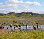 Happy hikers bathing in the natural geothermal hot spring Strútslaug in the Highlands of Iceland.