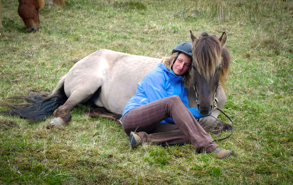 The Icelandic horses of Eastfjord farm Skorrastaður are friendly and more than happy to greet visitors.
