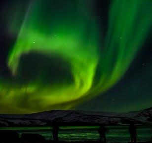 Wycieczka minibusem na zorzę polarną | Start z Reykjaviku