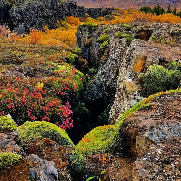 The UNESCO World Heritage site Þingvellir National Park cloaked in beautiful autumn colours.