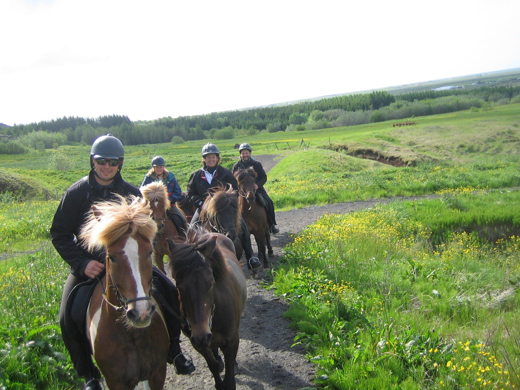 This Midnight Sun Horse Riding Tour takes you through red lava landscapes.