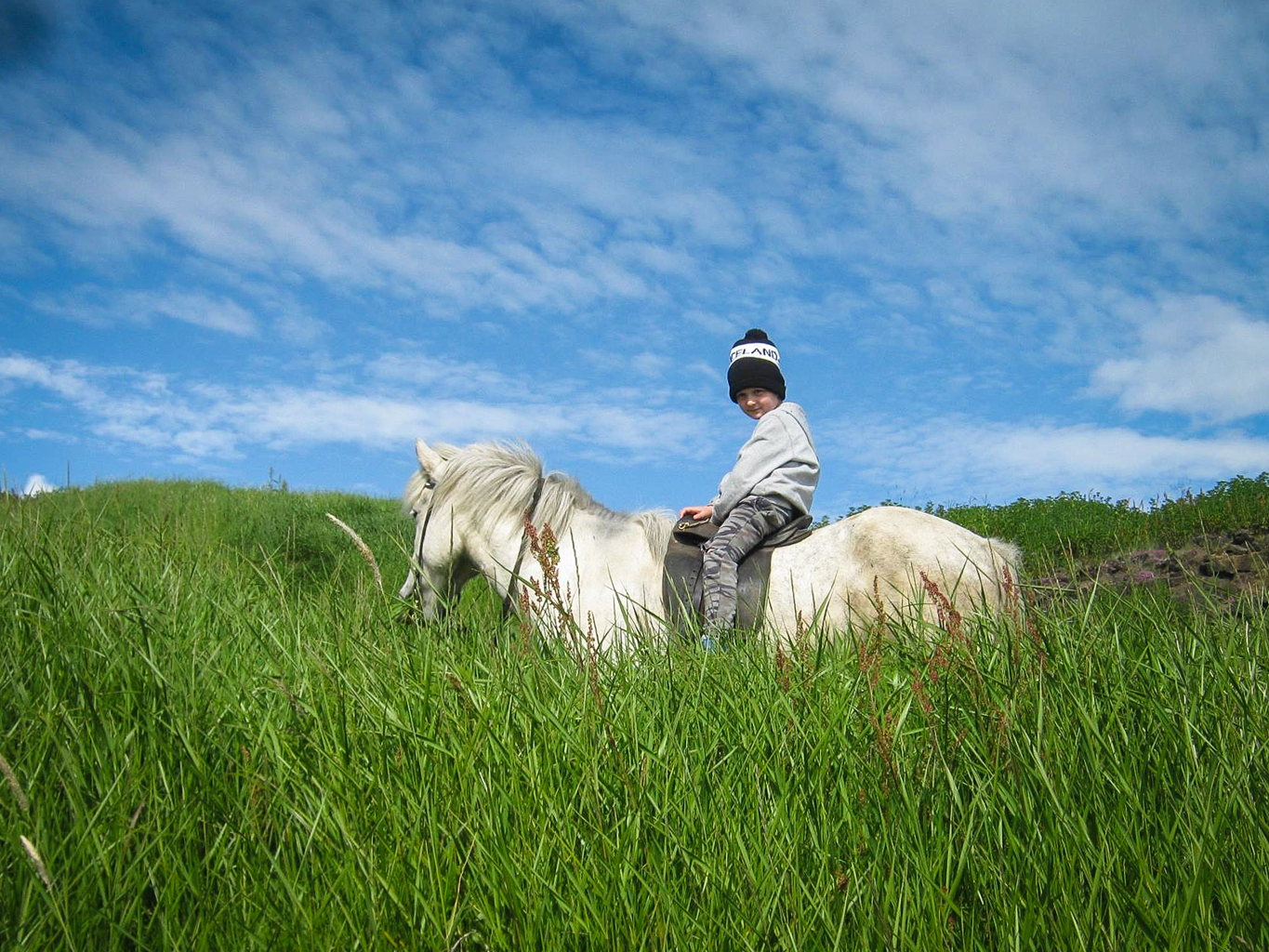 Horse riding is a family friendly and fun activity in Iceland.