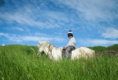 Horse Riding Family Tour | Departure from Thorlakshofn