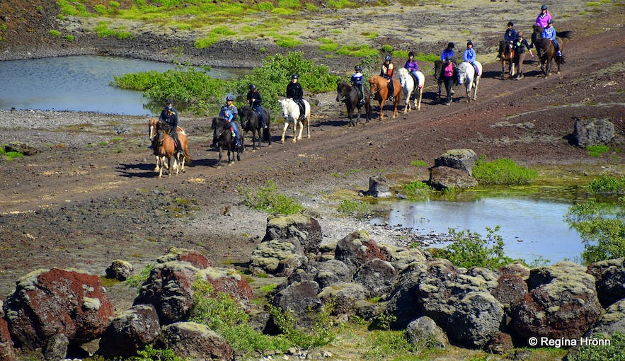 Horseback riding in Rauðhólar SW-Iceland