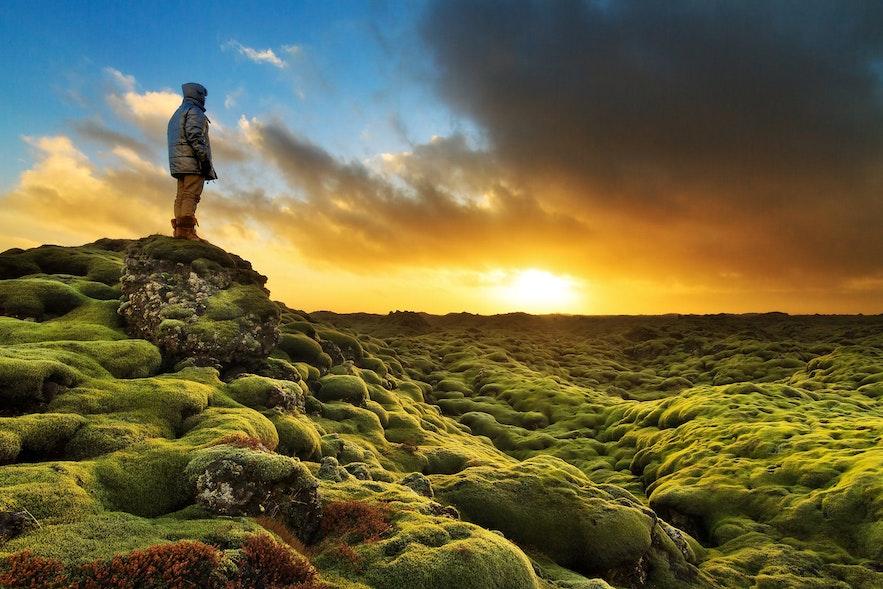 아이슬란드의 용암대지