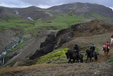 Volcano Hengill & Hot Spring Valley Horseback Riding