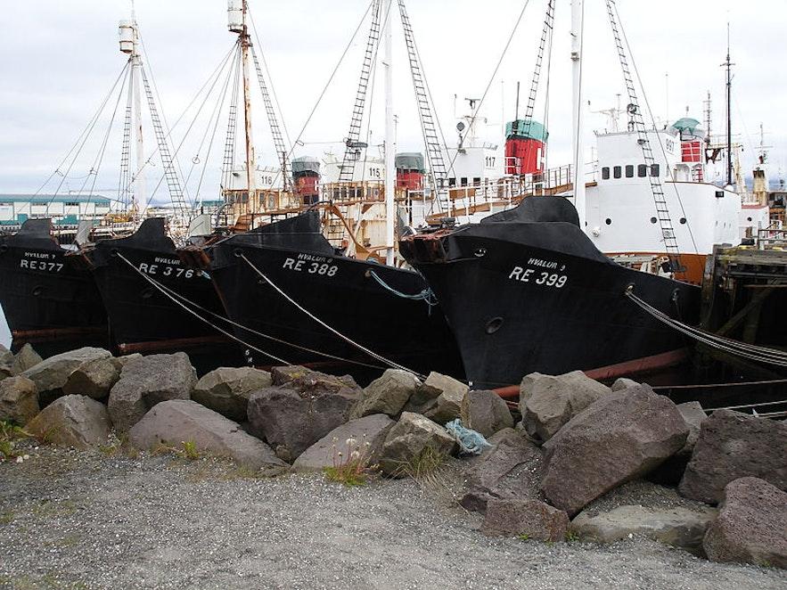 Walfangboote am Dock