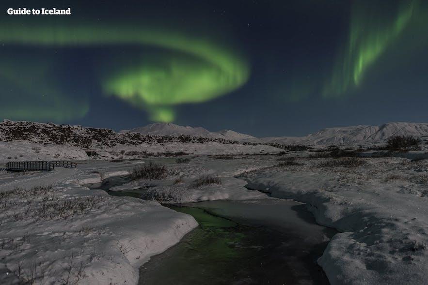 Þingvellir National Park wrapped in its winter colours, underneath the dancing aurora borealis.