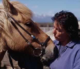 アークレイリ発の乗馬ツアー|2コースディナー付き