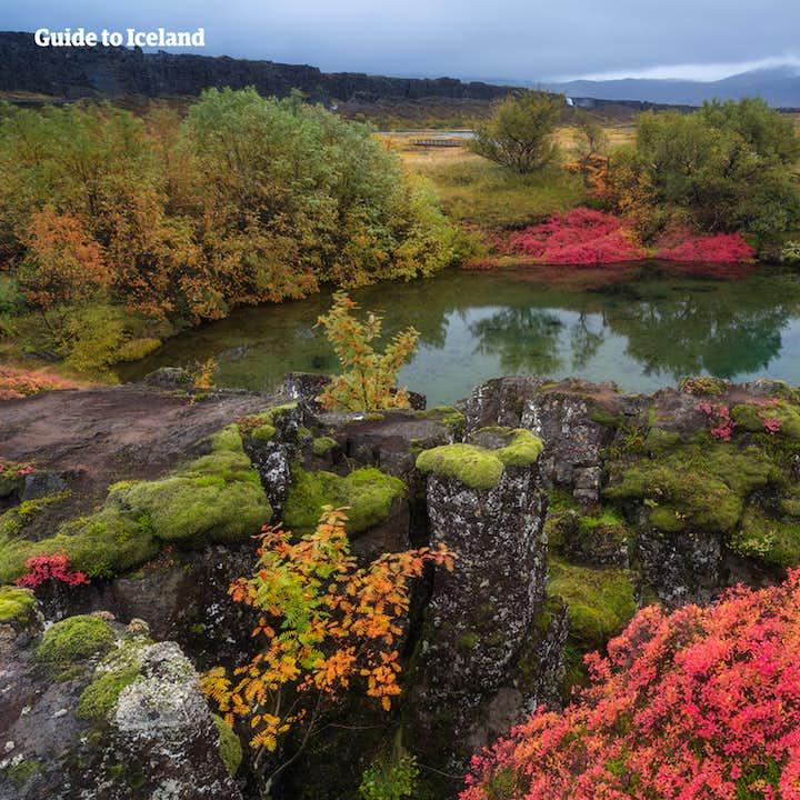 冰岛夏季3天2夜经济自驾游 | 黄金圈+秘密温泉+蓝湖