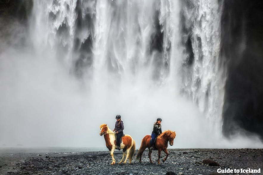 Two Icelandic horses and their riders in front of Skógafoss Waterfall on the South Coast of Iceland.