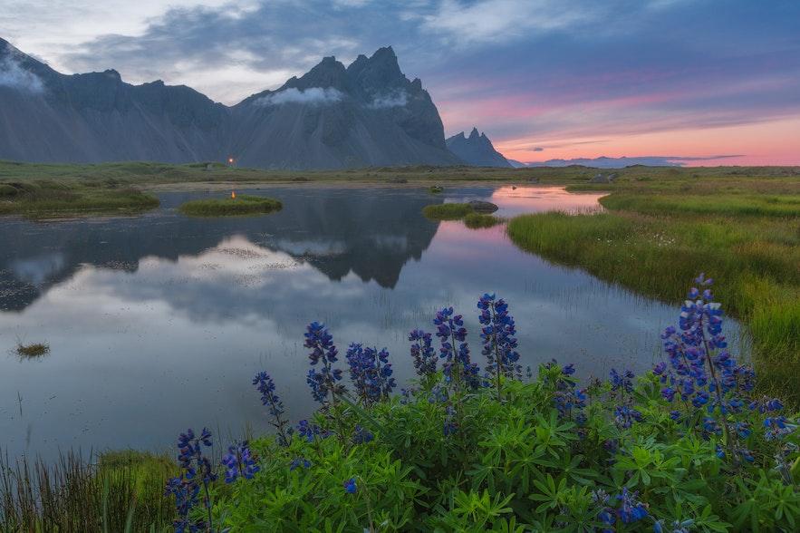 冰島的Vestrahorn