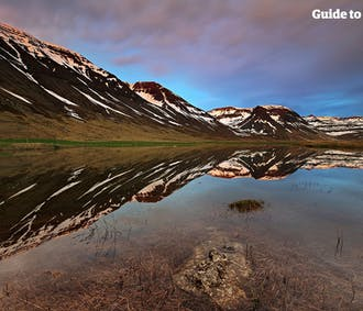 Fishing in the Westfjords | Dine on Your Catch
