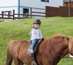 Będąc na Fiordach Zachodnich wybierz się na jazdę konno