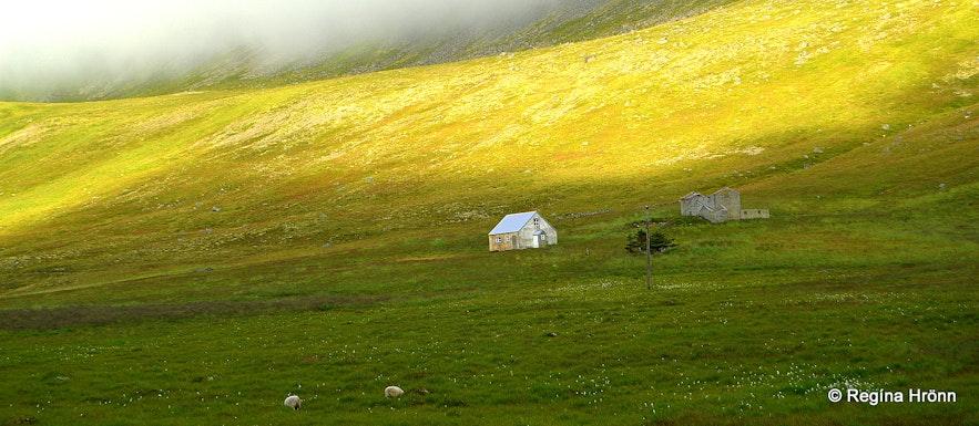 The sweeping landscapes of the Westfjords - Uppsalir in Selárdalur.