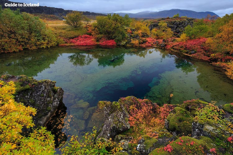 Crystal clear water at Þingvellir National Park in late summer.