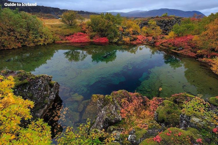 Kristallklares Wasser im Thingvellir-Nationalpark im Spätsommer.