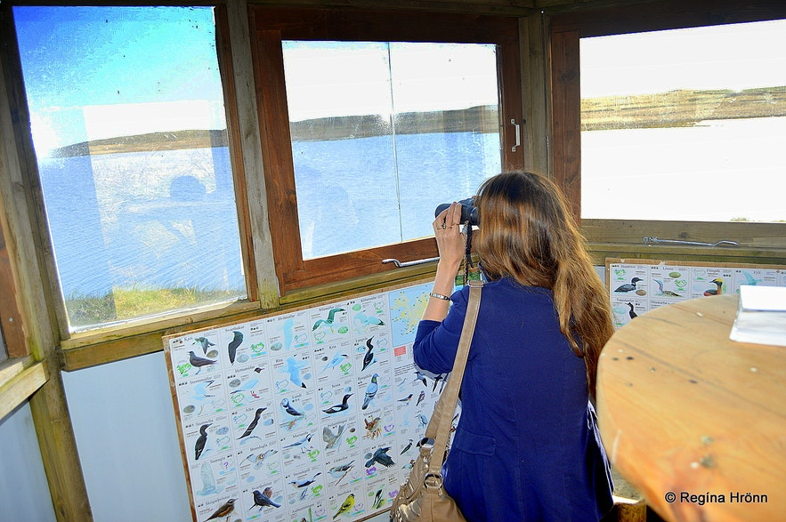 The Bird-Watching Hut at Efri-Vík