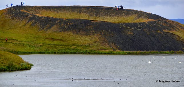 Skútustaðir pseudo craters in the Mývatn area in northeast Iceland